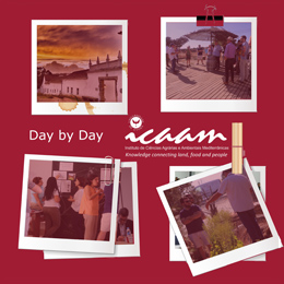 Day by Day ICAAM