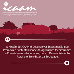 ICAAM